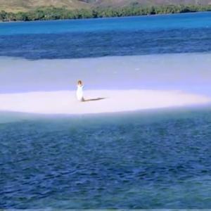 泣く泣くキャンセルしたハワイ旅行