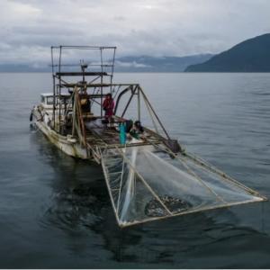 消費者「<高値>と申したとしても」 沖すくい網漁家族の生活かかる210606
