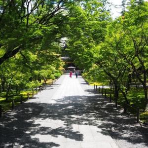 洛東 南禅寺