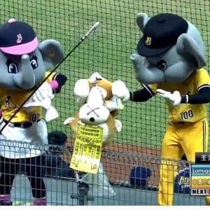 台中洲際棒球場の台湾シリーズG5でLamigoがアウェイ優勝