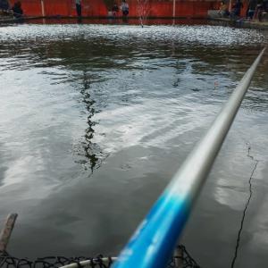 2021.4.18の釣果報告 釣り堀で( ̄▽ ̄;)