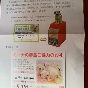 パピヨン・盲導犬協会へ寄付