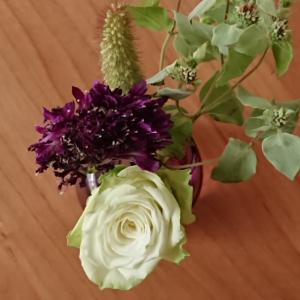 今週のお花とお買い物マラソン!