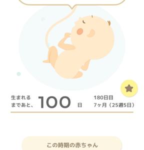 25w 100日切った! と 楽天SSのぽち候補【マリメッコとファッション】