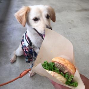 オリジナルハンバーガー!!
