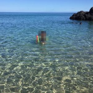 Waialea beach (Beach 69)