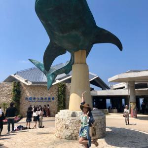 ☆まーちゃんとスピリチュアル沖縄旅③2日目最強ユタ照屋さん・美ら海水族館・オキちゃん劇場