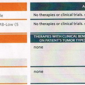 免疫チェックポイント阻害剤での治療