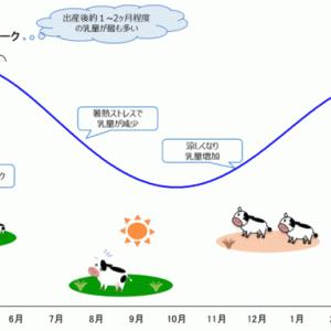 日本の牛乳を救う「プラスワンプロジェクト」緊急スタート! を見て牛乳飲んで!!