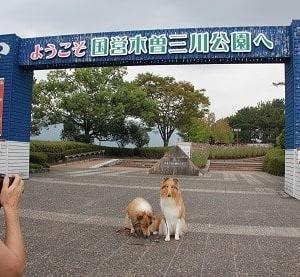 昨日は木曽三川公園へ