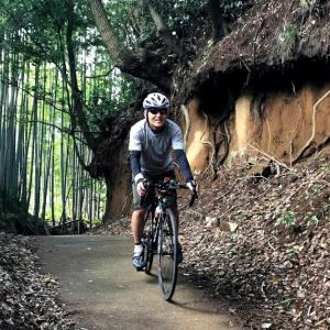 【裏尾根幹をロードバイクで走る】ここはトトロの世界か!?都心に最も近い奇跡の里山コース