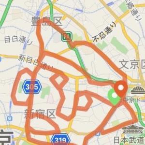 【顔マラソン完走記】走った軌跡で地図に顔を描きながらフルマラソンを走ろう!
