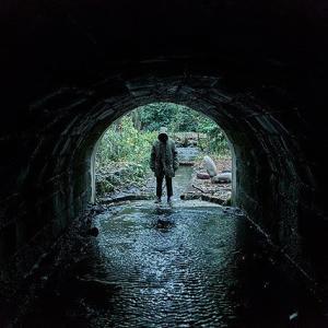 映画『ゴーストストーリーズ 英国幽霊奇談』:「人の脳は見たいように物を見る」夢と恐怖が交錯する深層心理の世界