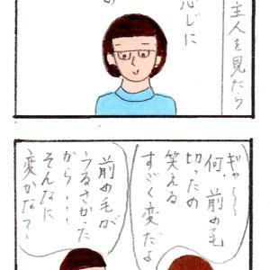 主人の髪形