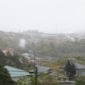 大荒れ天気でも朝散歩