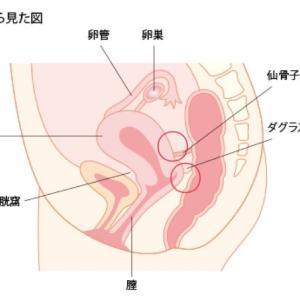 子宮内膜症と言われた日