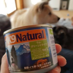 【実食】トライプ缶詰