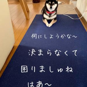 ポイント交換〜