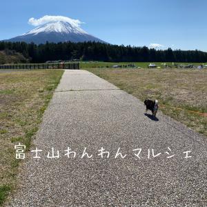 富士山わんわんマルシェ