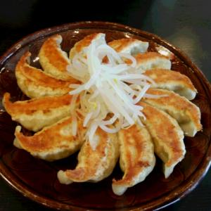 浜松餃子を食す
