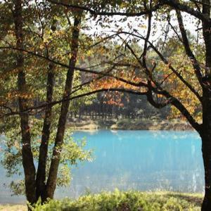 初めて見た「青い池」\(◎o◎)/!