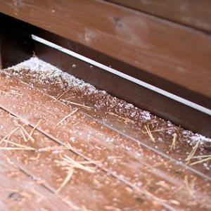 今日は「初雪」&ママシャンdayでした。