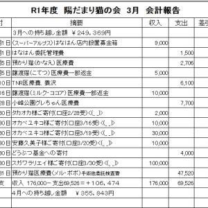 3月 会計報告