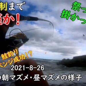 【鮭釣り】苫小牧アキアジ釣り!朝マズメからの昼マズメ!錦多峰の様子♪