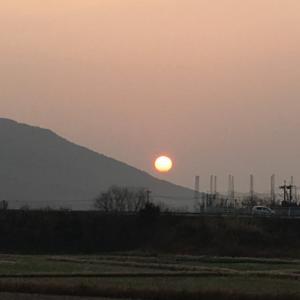 日向の夜明け