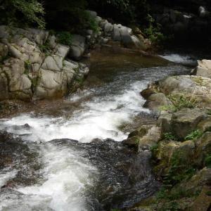 渓流沿いの遊歩道を歩く
