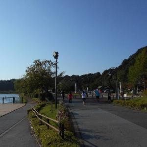 千波湖を走ってから萩の花を見に