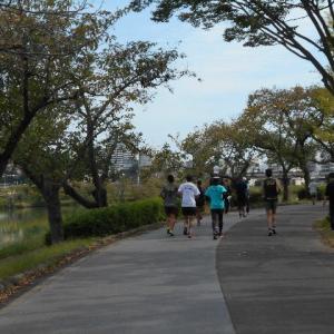 ジョギング日和の日曜日