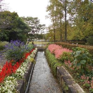 植物公園で花を見ながら歩く
