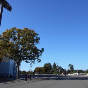 秋晴れの朝に一走り