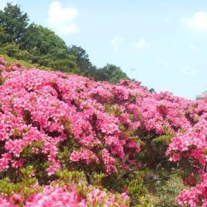 茨城県フラーワーパークへ(2)