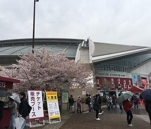 2019 サッカー J1 ヴィッセル神戸 VS サンフレッチェ広島