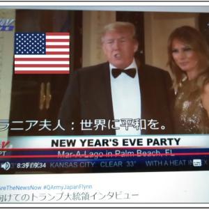 【重要な真実】平和を望むトランプ大統領「2020新年に向けてのトランプ大統領インタビュー OFFICIAL QArmyJapanFlynn 」