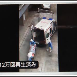 【新型肺炎コロナウイルス】日本国民の人命を守る対応が必要