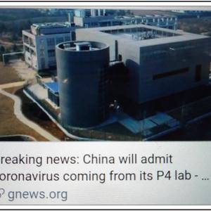 中国政府がP4施設からのコロナウイルス発生を認める China will admit coronavirus coming from its P4 lab.