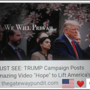希望に向かって HOPE【 Donald J Trump 】