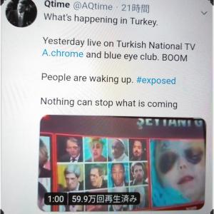 【アドレノクロム】Adrenochrome トルコの放送局で報道