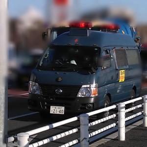 【ニュースで報道された集団ストーカー犯罪】Organized Gang Stalking and Electronic harassment in national TV mp4 360p 2010/11/17