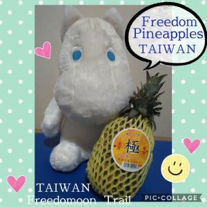 【台湾パイナップルの勝利】 How Taiwan won a 'Pineapple war' against China