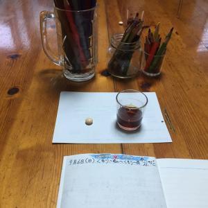 夕方日誌を書くときに、栄養剤と養命酒を飲みます!