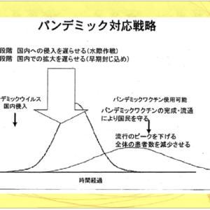 歴史に学ぶ、なつかしい図から(武漢閉鎖や団体旅行禁止は有効か)