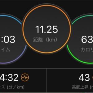 適度な運動走