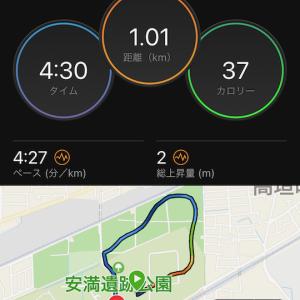 もスピ練/高槻シティハーフ(*^^*)