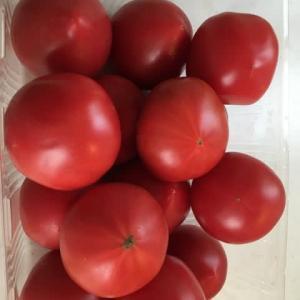 週に1度のお買い物!トマトが安かったのよ♪
