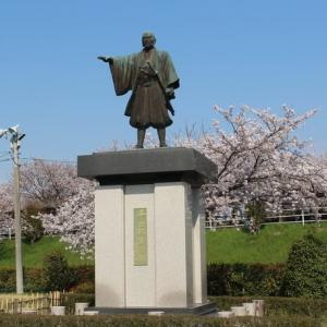 海津の桜(2020年4月4日)