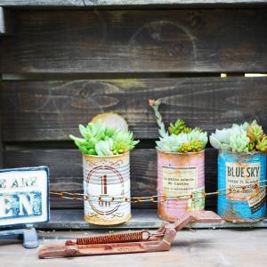 *フェリシモ女子DIY部連載「リメイク缶を作ろう!多肉植物の寄せ植え編」*